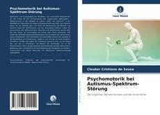 Psychomotorik bei Autismus-Spektrum-Störung的封面