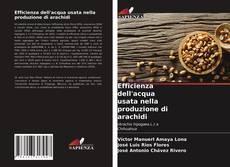 Buchcover von Efficienza dell'acqua usata nella produzione di arachidi