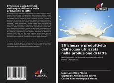 Buchcover von Efficienza e produttività dell'acqua utilizzata nella produzione di latte
