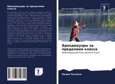 Bookcover of Брандмауэры за пределами класса