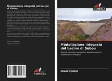 Modellazione integrata del bacino di Sebou的封面