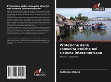 Borítókép a  Protezione delle comunità etniche nel sistema interamericano - hoz