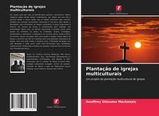 Capa do livro de Plantação de igrejas multiculturais
