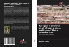 Spiegare il dilemma degli alloggi a basso reddito nell'Africa subsahariana kitap kapağı