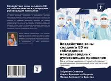 Bookcover of Воздействие зоны холдинга ED на соблюдение международных руководящих принципов