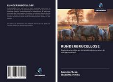Bookcover of RUNDERBRUCELLOSE