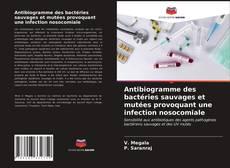 Copertina di Antibiogramme des bactéries sauvages et mutées provoquant une infection nosocomiale