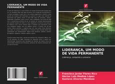 Обложка LIDERANÇA, UM MODO DE VIDA PERMANENTE