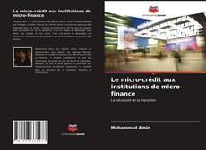 Обложка Le micro-crédit aux institutions de micro-finance