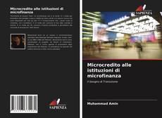 Bookcover of Microcredito alle istituzioni di microfinanza
