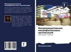 Микрокредитование микрофинансовых организаций kitap kapağı
