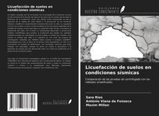 Bookcover of Licuefacción de suelos en condiciones sísmicas