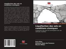 Couverture de Liquéfaction des sols en conditions sismiques
