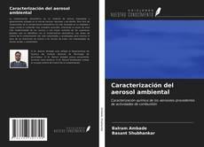 Caracterización del aerosol ambiental的封面