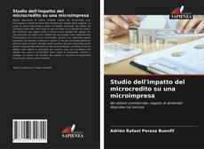 Copertina di Studio dell'impatto del microcredito su una microimpresa