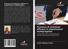 Copertina di Processo di selezione efficace in impostazioni multiprogetto: