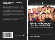 Cultura, solidaridad y el ideal de sostenibilidad的封面