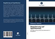 Buchcover von Regulierung auf Sparflamme: