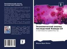 Экономический анализ последствий Ковида-19 kitap kapağı