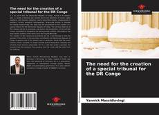 Bookcover of The need for the creation of a special tribunal for the DR Congo