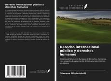 Derecho internacional público y derechos humanos kitap kapağı