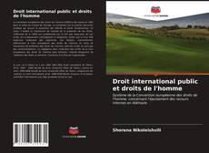 Portada del libro de Droit international public et droits de l'homme