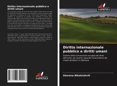 Capa do livro de Diritto internazionale pubblico e diritti umani