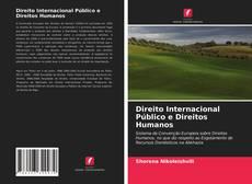 Couverture de Direito Internacional Público e Direitos Humanos