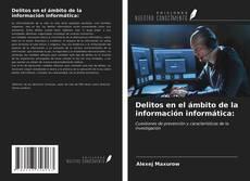 Portada del libro de Delitos en el ámbito de la información informática: