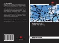 Bookcover of Incarceration