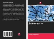 Bookcover of Encarceramento