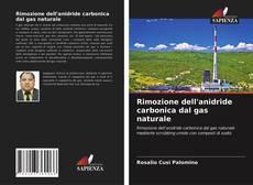 Bookcover of Rimozione dell'anidride carbonica dal gas naturale
