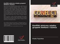 Couverture de Konflikt etniczny między grupami Amhara i Gumuz