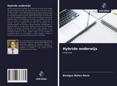 Buchcover von Hybride onderwijs