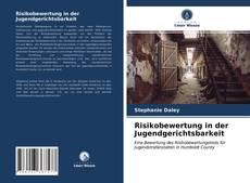Bookcover of Risikobewertung in der Jugendgerichtsbarkeit