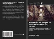 Bookcover of Evaluación de riesgos en el sistema de justicia juvenil