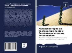 Buchcover von Актинобактерии из тропических лесов с биотехнологическим потенциалом