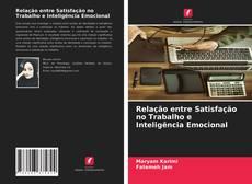 Capa do livro de Relação entre Satisfação no Trabalho e Inteligência Emocional
