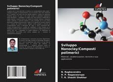 Copertina di Sviluppo Nanoclay/Composti polimerici