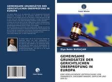 Buchcover von GEMEINSAME GRUNDSÄTZE DER GERICHTLICHEN ÜBERPRÜFUNG IN EUROPA