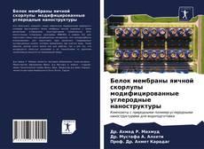 Portada del libro de Белок мембраны яичной скорлупы модифицированные углеродные наноструктуры