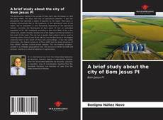 Bookcover of A brief study about the city of Bom Jesus PI