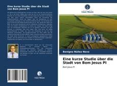 Eine kurze Studie über die Stadt von Bom Jesus PI kitap kapağı
