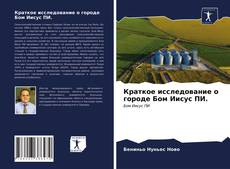Bookcover of Краткое исследование о городе Бом Иисус ПИ.