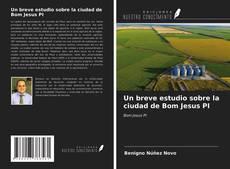 Un breve estudio sobre la ciudad de Bom Jesus PI kitap kapağı