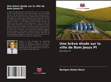 Une brève étude sur la ville de Bom Jesus PI kitap kapağı