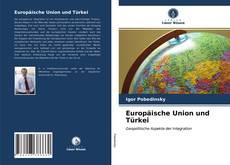 Europäische Union und Türkei kitap kapağı