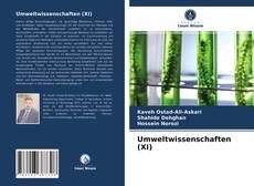 Umweltwissenschaften (XI) kitap kapağı