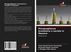 Copertina di Disuguaglianza economica e sociale in Messico