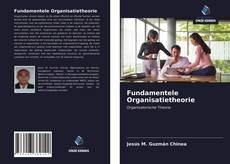 Bookcover of Fundamentele Organisatietheorie